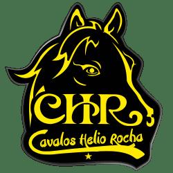 Cavalos Helio Rocha